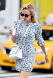 Chloë Sevigny Out in New York