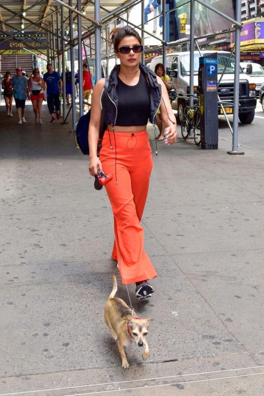 Priyanka Chopra Out with Her Dog in New York