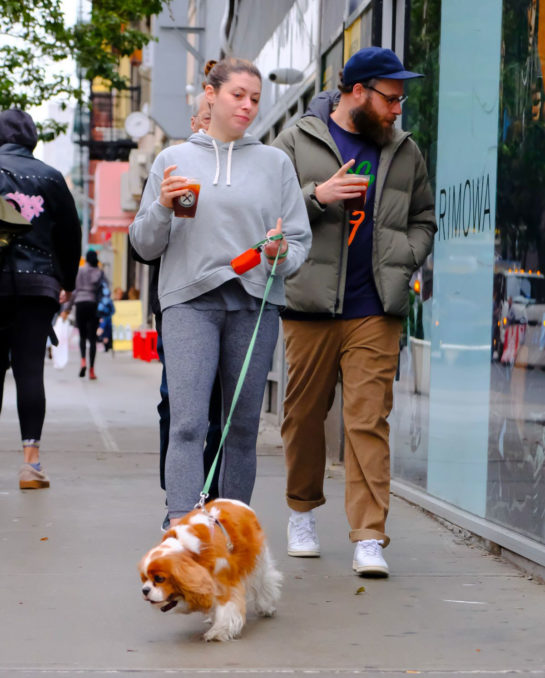 Lauren Miller and Seth Rogen Out with Their Dog in New York