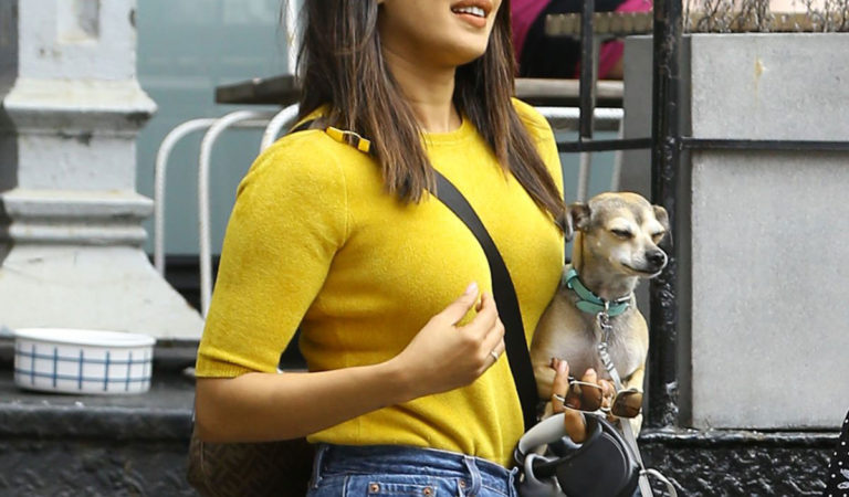 Celebrity Pets – Priyanka Chopra with her dog Out in New York