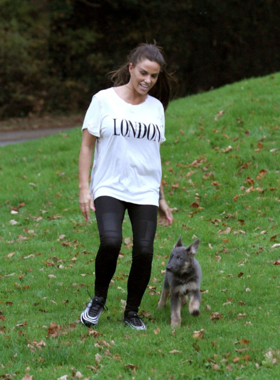 Katie Price trains her dog at a park in Brighton