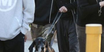 Heidi Klum and Tom Kaulitz Out with Their Dog in Santa Monica