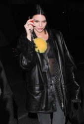 Kendall Jenner Night Out in Beverly Hills