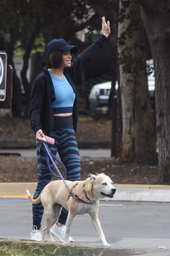 Jenna Dewan Out with Her Dog in Studio City