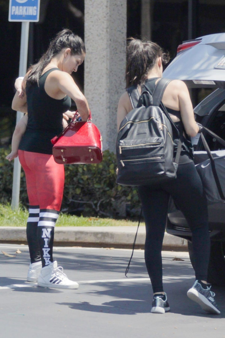 Nikki and Brie Bella Arrives at a Gym in Mission Bay