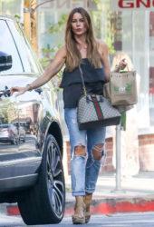 Sofia Vergara Out in Beverly Hills