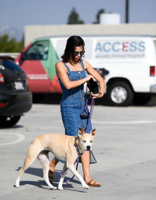 Jenna Dewan taking her dog to the vet in Los Angeles