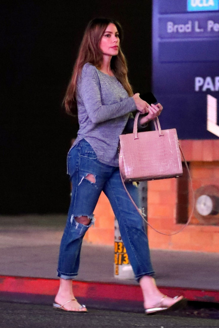 Sofia Vergara Out and About in Beverly Hills