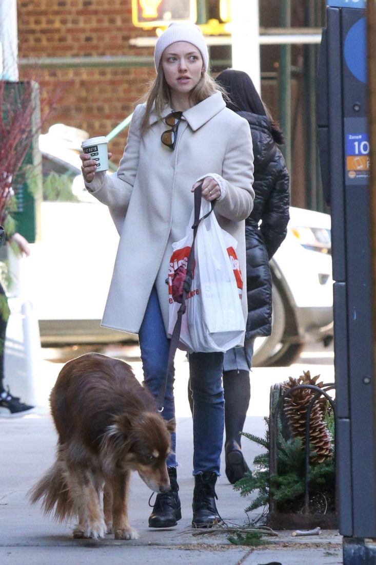 Amanda Seyfried Out with Her Dog in New York