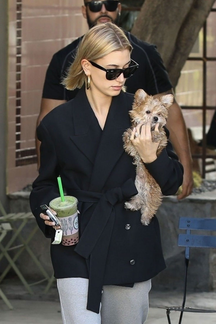 Hailey Bieber Out for Smoothie with Her Dog in West Hollywood