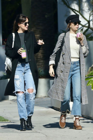 Dakota Johnson and Stella Banderas Out in West Hollywood