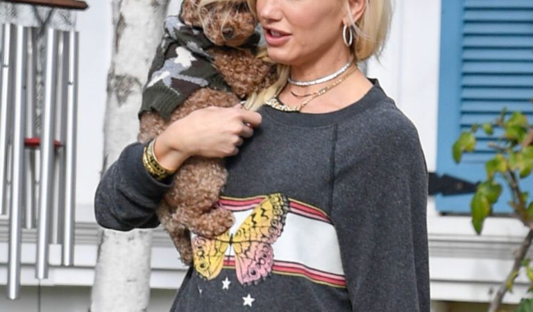 Celebrity Pets – Gwen Stefani Out with Her Dog in Los Angeles