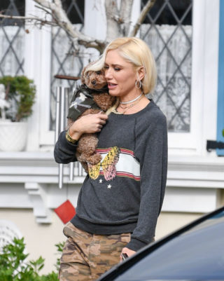 Gwen Stefani Out with Her Dog in Los Angeles
