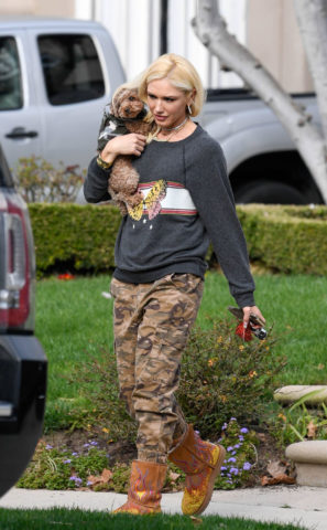 Gwen Stefani Out with Her Dog in Los AngelesGwen Stefani Out with Her Dog in Los Angeles