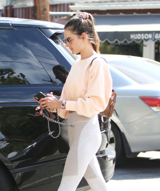 Alessandra Ambrosio Shopping Flowers Out in Brentwood