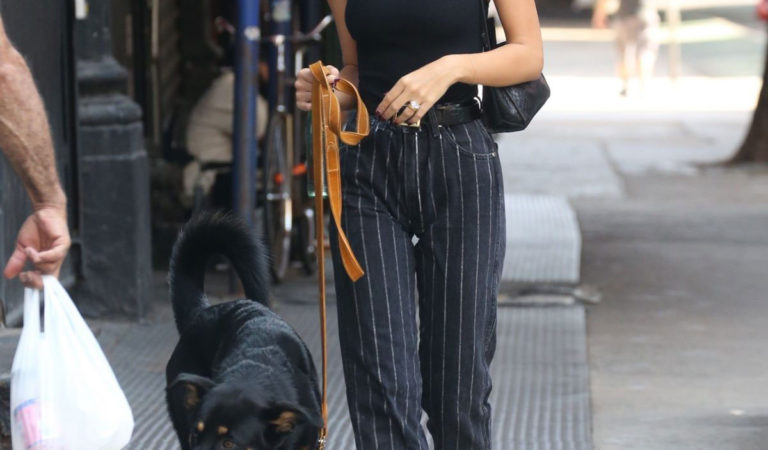 Celebrity Pets – Emily Ratajkowski Out with Her Dog in New York