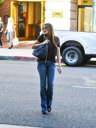 Sofia Vergara Out in Los Angeles