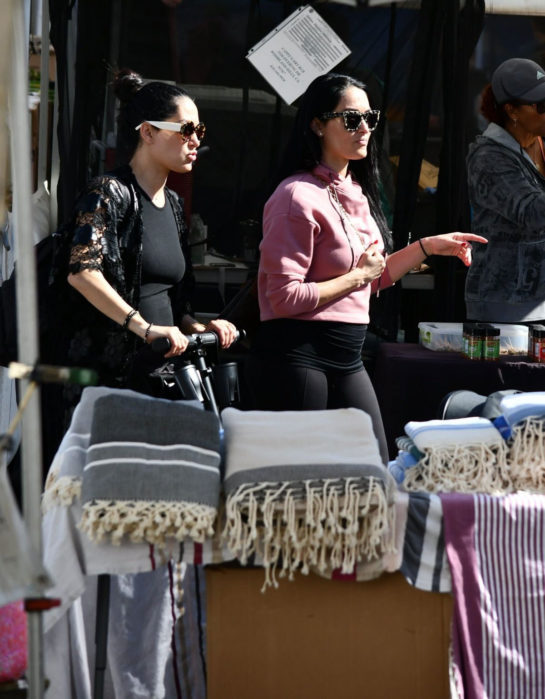 Pregnant Nikki and Brie Bella at Farmers Market in Los Angeles