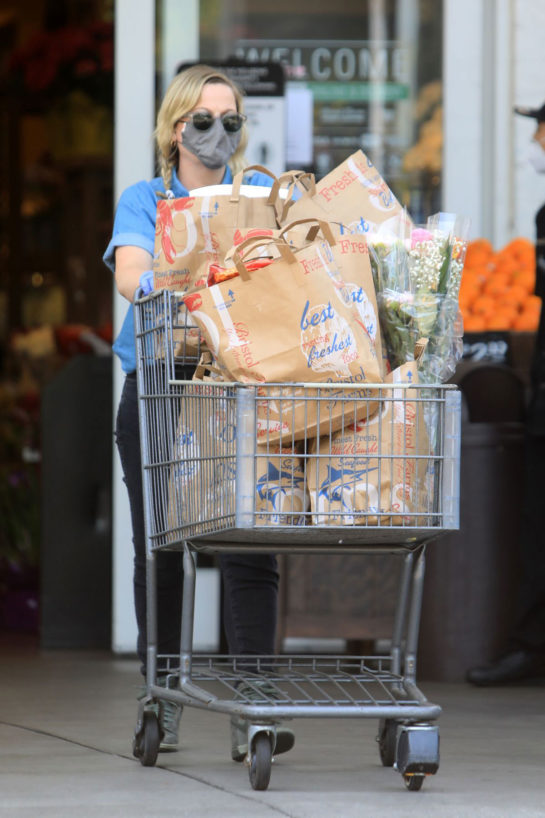 Amy Poehler out grocery shopping in Los Angeles