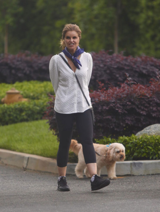 Maria Shriver Walks Her Dog Out in Brentwood
