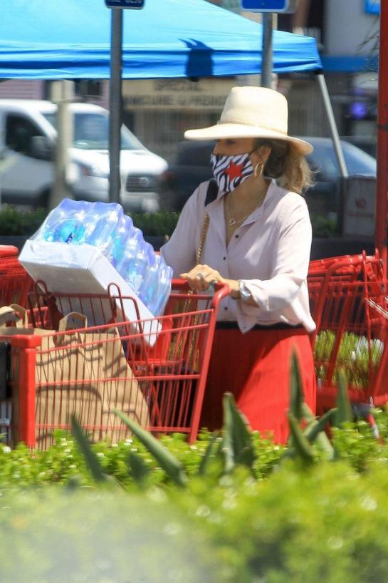 Sasha Alexander Wearing a Mask at Ralphs in West Hollywood