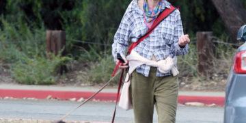 Andie MacDowell walking her dogs in Los Angeles